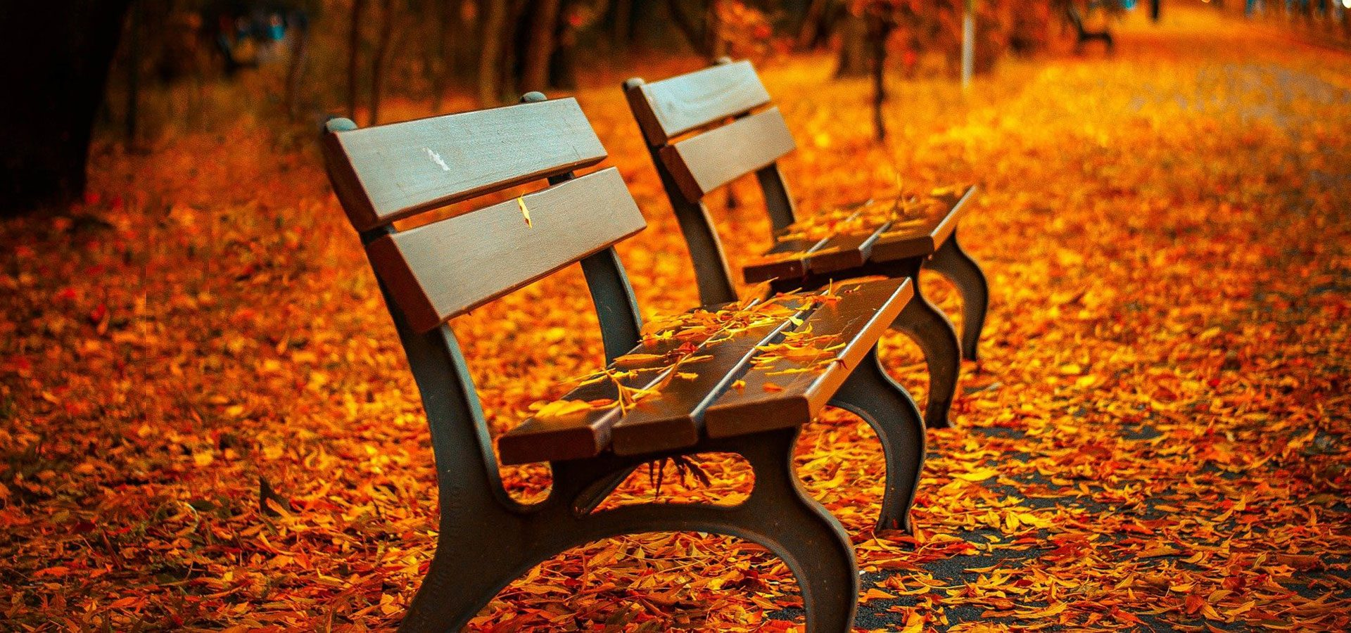 1920x900 autumn benches