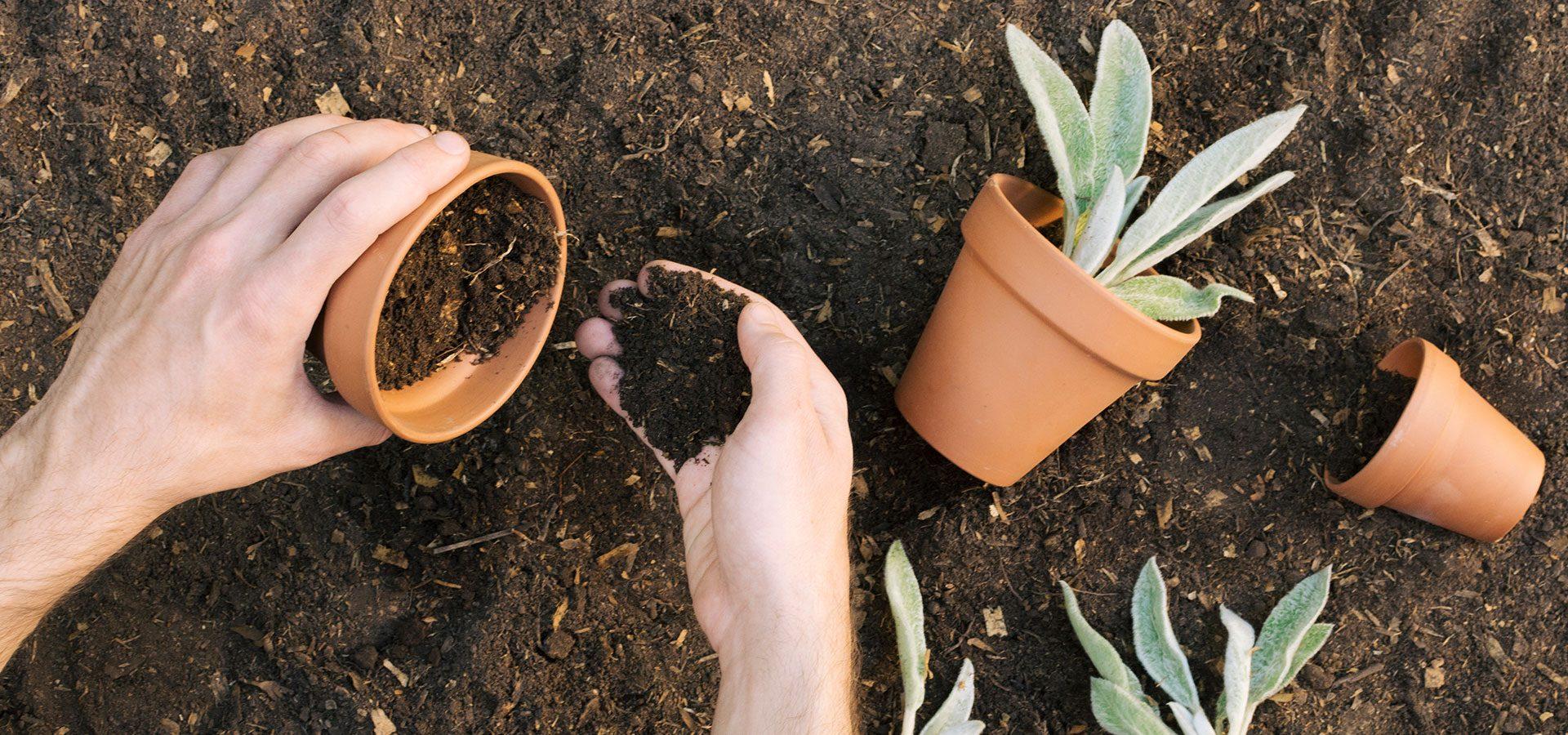 hand-gardening 1920x900-60%lower